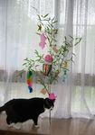 tanabata070705-a.jpg